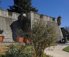 Alès : ALES - lundi 31 août 2020 - Balade fleurie : Alès, jardin ethnobotanique et d'acclimatation