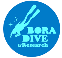 BORA DIVE & RESAERCH