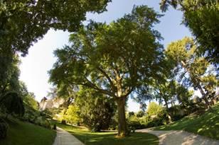 Entre jardin et rivière, du jardin des Plantes à Chasseigne