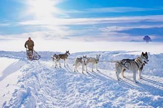 Les plus belles montagnes pour faire du chien de traîneau