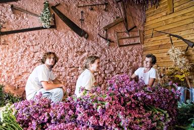 Atelier des Fleurs Séchées