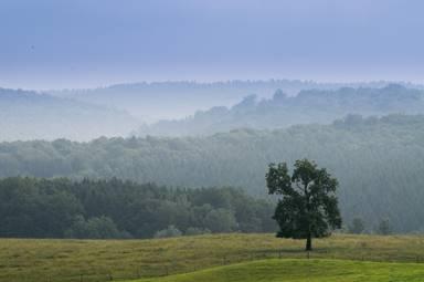 Destination Ardenne