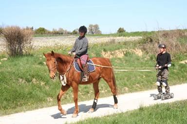 frany equitation