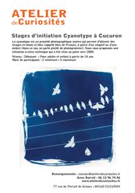 Stages présentation