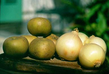 oignons et pommes