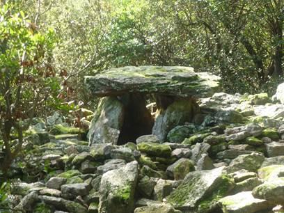 Randonnée : Dolmens en Cévennes