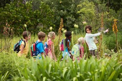 Randonnée : Chacun de nous est un botaniste qui s'ignore!