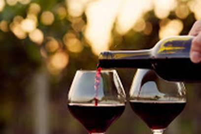 Dégustation de vin et fruits de mer