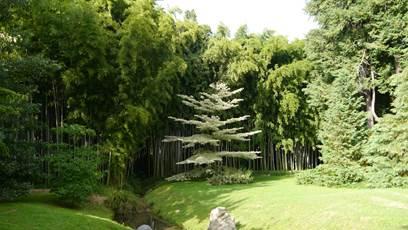 Les auxiliaires des jardins à la Bambouseraie