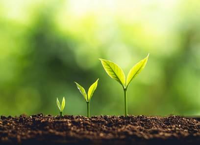L'Agglo en Balade - Secrets de plantes et producteurs