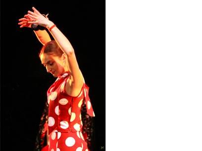 Ateliers Flamenco