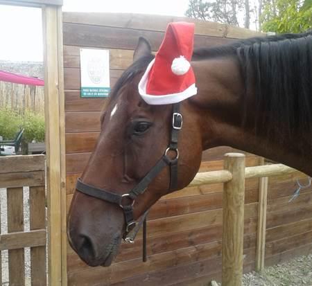 La Féérie de Noël