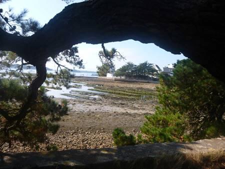 Balade familiale et ludique, contée et commentée à l'île Berder