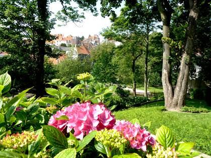 Le jardin Bucialli