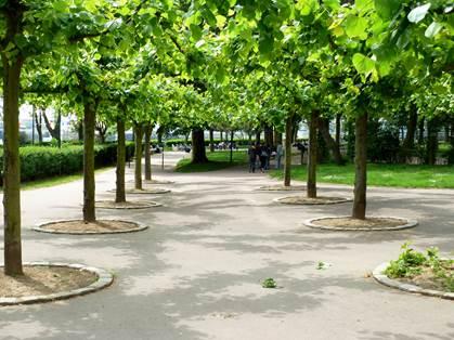 Le jardin de Nausicaà