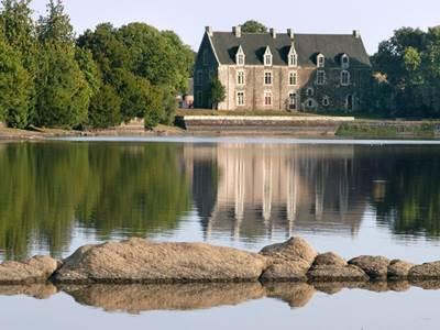 Histoire d'arbres au Château de Comper