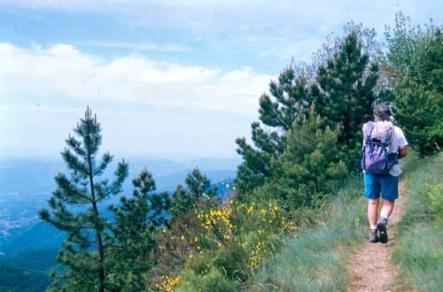 Festival de la randonnée en Cévennes FIRA