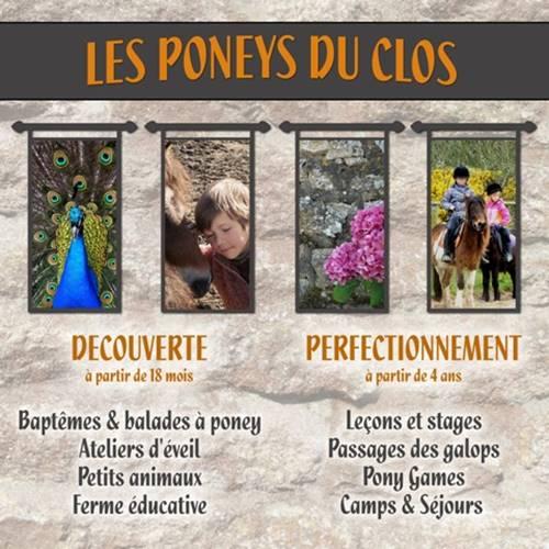 Les Poneys du Clos