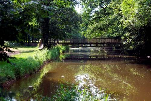 Forêt des Baux de Caulne