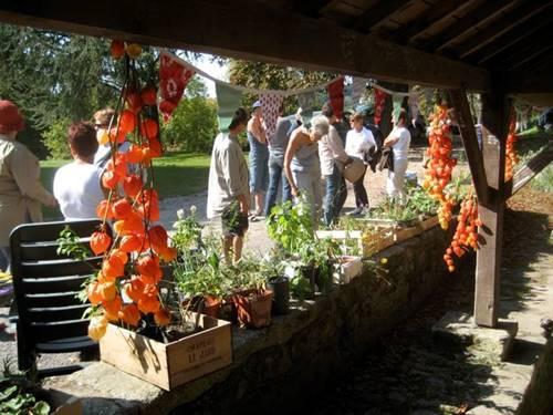 Troc de plantes - La Roche-Bernard