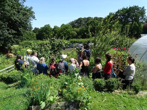 Atelier jardin: Butte de permaculture