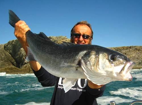 Pêche en mer Arnaud de Wildenberg