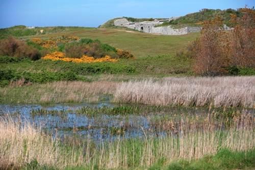 Le Vieux Fort et Marais