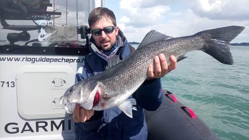 Mickaël RIO - Guide de Pêche Professionnel