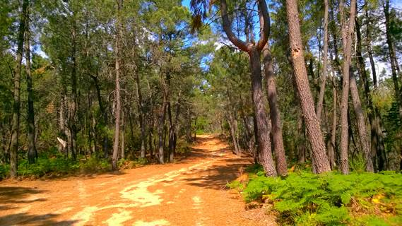 Sentier de découverte de Blannaves