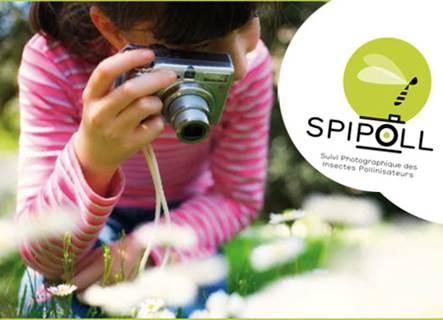 Le Spipoll, un suivi de la biodiversité à l'ère du numérique