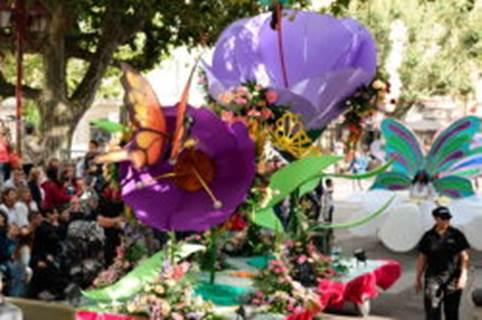14 Juillet à Alès: Corsos fleuris, Feu d'artifice, bal musette