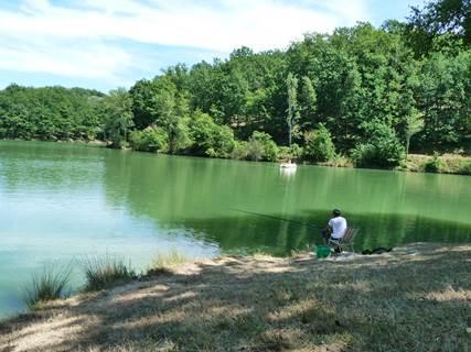 Opération 1000 truites au lac de La Vallée des Loisirs