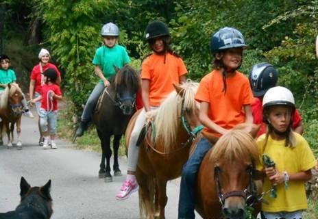 Balade à poneys dans les collines autour de Lasalle
