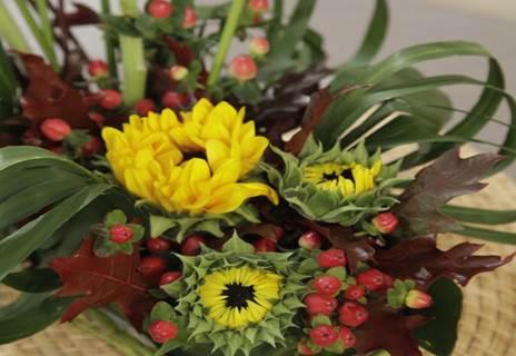 Végéti'ixia - Découverte de l'art floral