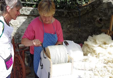 Journée de la laine