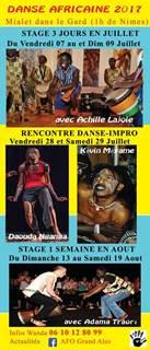 Stage de danse Afro Moderne