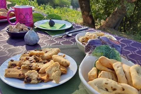 Petit déjeuner dans le verger conservatoire du figuier