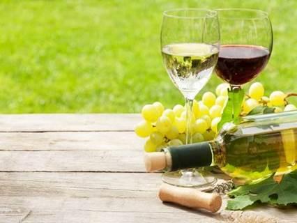 Le vin en fête, 3° édition