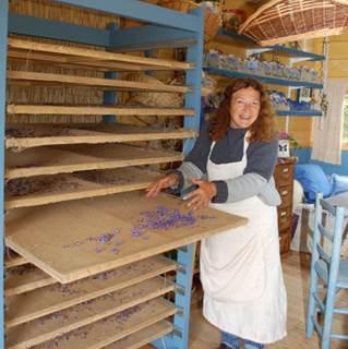 La Sauvage Bleue, producteur de bourrache