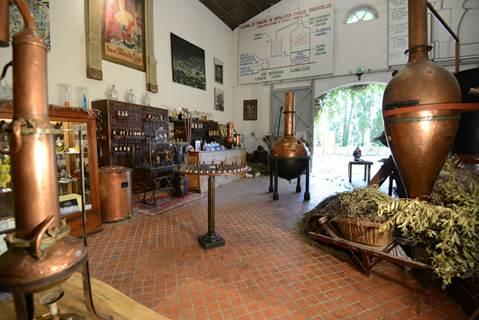 Musée des Arômes et du Parfum - Espace ECOBIO