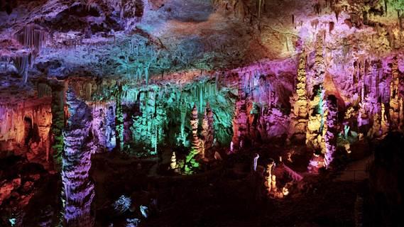 Les Jeudis Découverte à la Grotte de la Salamandre