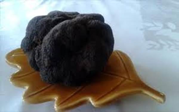 week end truffe à Uzès