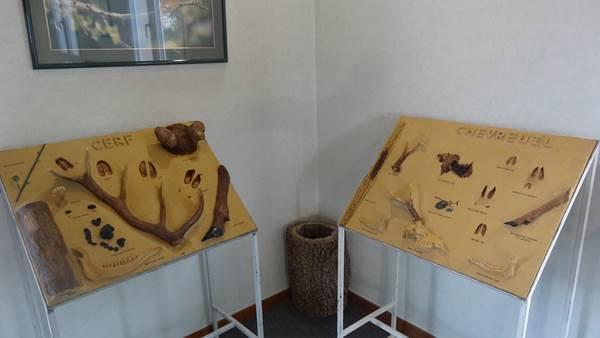 Musée de la Chasse et de la Nature panneaux