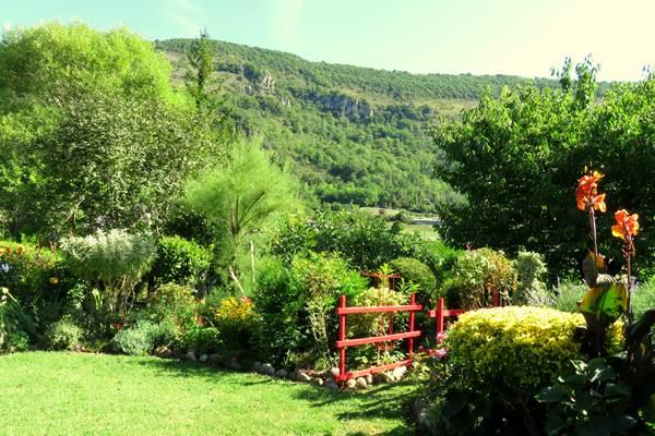 Studio -jardin