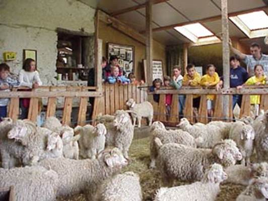 journee-groupes-enfants-ariege-pyrenees