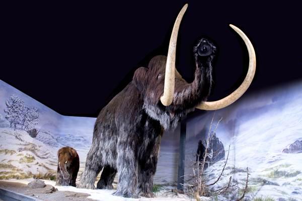 Les Géants de l'âge de glace - groupes