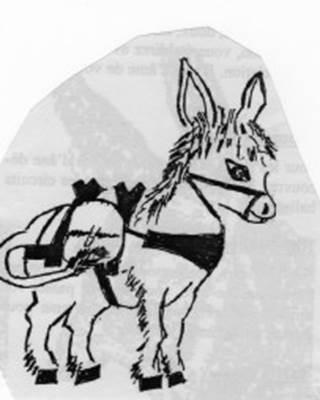 balade a dos d'âne