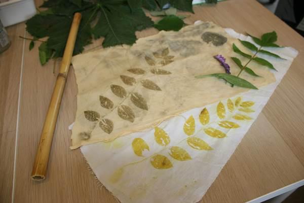 Atelier Nature teinture
