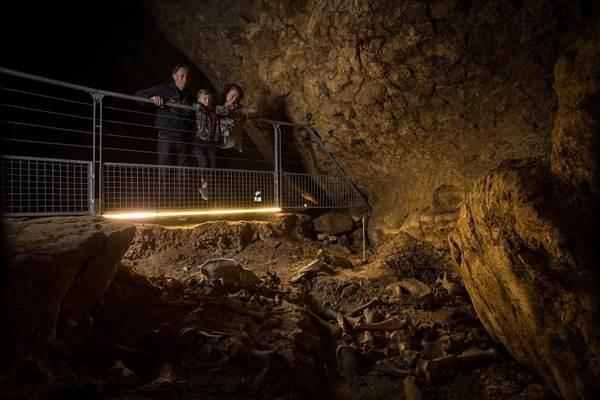 Gisement - Grotte du Mas d'Azil