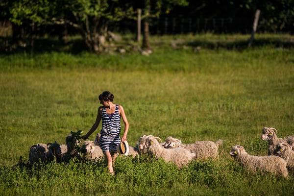 La ferme des Moulis